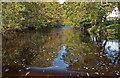 NY4975 : The footbridge by David Liddle