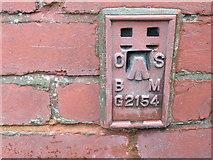 SE0424 : Ordnance Survey Flush Bracket G2154 by Peter Wood
