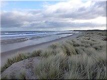 NZ2796 : Druridge Links by Russel Wills