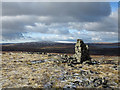NY8326 : Cairn at Lang Hurst by Trevor Littlewood