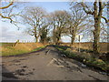 NU2504 : Gloster Hill Road towards Gloster Hill by Ian S