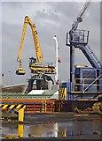 TA0827 : William Wright Dock cranes, Hull by Paul Harrop