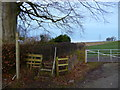 NY3857 : Footpath to River Eden by David Liddle
