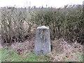TL1267 : Ordnance Survey Trig Pillar S5881 by Peter Wood