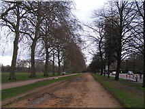 TQ2779 : Looking east along the edge of Hyde Park by Rob Purvis