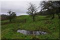SD6671 : Old earthworks near Faccon Farm by Ian Taylor