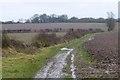 SK4626 : Fields south of Lockington by David Lally