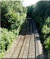 SO3204 : Shallow railway cutting, Penperlleni by Jaggery