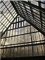 SX8274 : Atrium, Trago Mills by Derek Harper