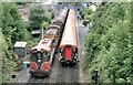 T1988 : Crossing trains, Rathdrum station by Albert Bridge