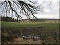 NS9495 : Field, Aberdona by Richard Webb
