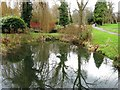 TQ4066 : Pond in The Knoll, Hayes by Alex McGregor