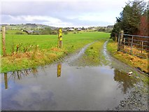 H5575 : Flooding along Loughmacrory Road by Kenneth  Allen