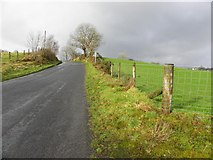 H5575 : Loughmacrory Road by Kenneth  Allen
