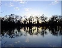 TQ0481 : Little Britain Lake at sunset (4) by Stefan Czapski