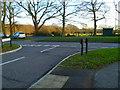 SU4611 : View across Botley Road from Delius Avenue by Shazz