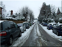 TL1314 : Salisbury Avenue by Thomas Nugent