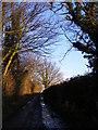 TM4562 : Grimsey's Lane, Leiston by Adrian Cable