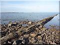NT6679 : Coastal East Lothian : Belhaven Bay Sewage Outflow Pipe by Richard West