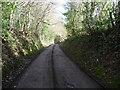 SO5312 : Sunken lane near Beaulieu Farm by Jeremy Bolwell