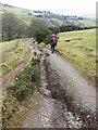 NY2925 : Path erosion on the eastern spur of Latrigg by Oliver Dixon