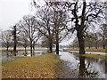 TQ2172 : Flooding near Robin Hood Gate, February 2013 (2) by Stefan Czapski