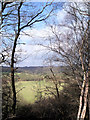 SJ9892 : River Etherow Valley by Stephen Burton