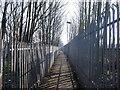 TQ7868 : Footpath to Woodlands Road, Gillingham by David Anstiss