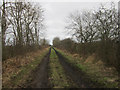 NT9550 : Footpath along line of former railway near Longridge by Graham Robson