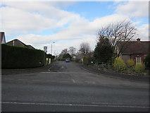 NS4762 : Balgonie Drive by Billy McCrorie