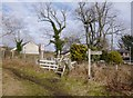 NH5355 : Footpath level crossing, by Maryburgh by Craig Wallace