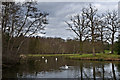 TQ0959 : The Lake, Painshill Park by Ian Capper