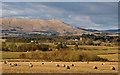 NS9793 : Farmland near Piperpool by William Starkey