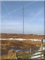 SE0903 : Holme Moss by David Dixon