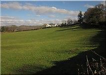 SX7087 : Pasture near Chagford by Derek Harper