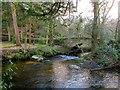 SX6887 : Teignmeet and Leigh Bridge by Derek Harper