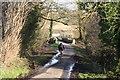 SJ5776 : Cliff Lane by Dave Dunford