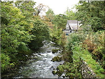 NY3204 : Great Langdale Beck, Elterwater by David Purchase