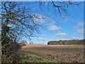 TA1735 : Ellerby, Yorkshire by Bernard Sharp