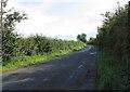 SK6506 : Beeby Road towards Scraptoft by Andrew Tatlow