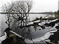 H5775 : Icy at Loughmacrory Lough by Kenneth  Allen