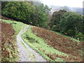 NY3506 : The Coffin Route between Grasmere and Rydal by David Purchase