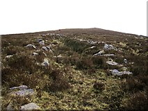 R9524 : Ancient Trackway by kevin higgins