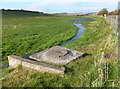 SU4981 : River Pang at East Ilsley by Des Blenkinsopp