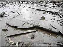NZ1665 : Rudder in debris field of Ryton Wherries, west of Newburn Bridge by Andrew Curtis