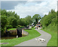 SP1756 : Towpath with dog by the Wilmcote Locks, Warwickshire by Roger  Kidd