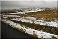 NY7350 : Ayle Common by David Dixon