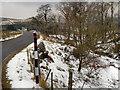 NY7350 : A686, Alston Moor by David Dixon