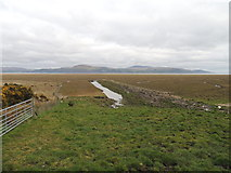 NX4355 : Wetlands at Wigtown Bay by Billy McCrorie