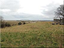 NX4355 : Farmland towards the Wigtown Wetlands by Billy McCrorie